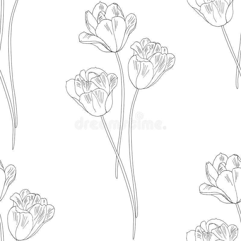 тюльпаны картины безшовные Нарисованная рукой иллюстрация вектора Monochrome черно-белый эскиз чернил Линия искусство Изолировано бесплатная иллюстрация