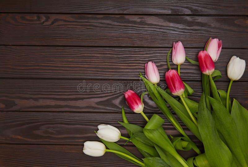 Тюльпаны на коричневой деревянной предпосылке стоковое изображение