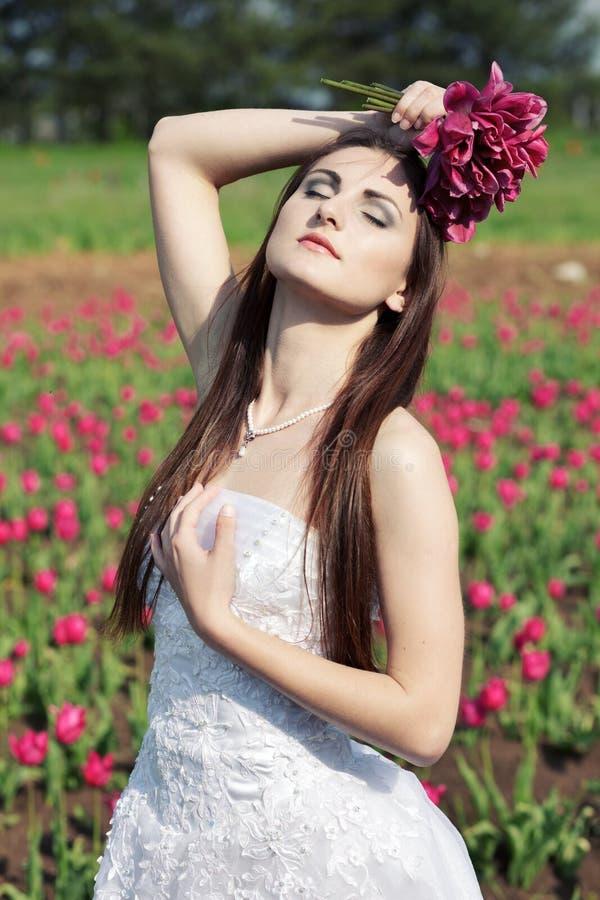 тюльпаны поля невесты стоковое фото