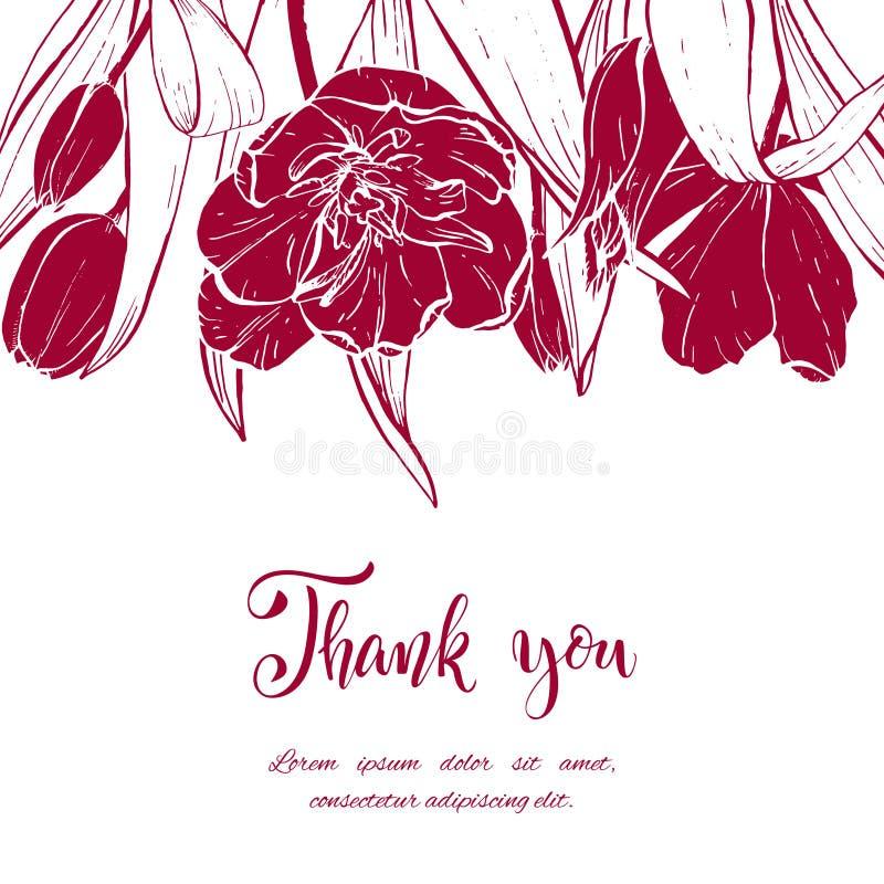 Тюльпаны эскиза линейные цветут иллюстрация штока