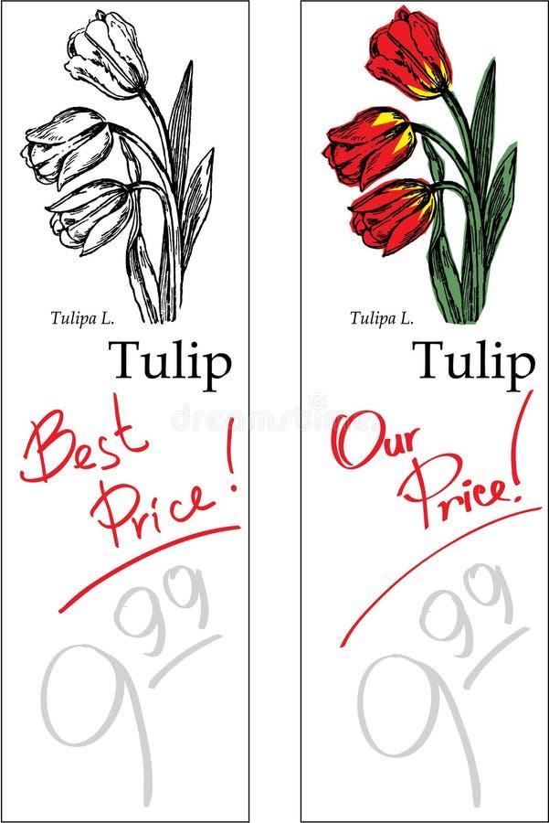 тюльпан 2 ценников стоковые фотографии rf