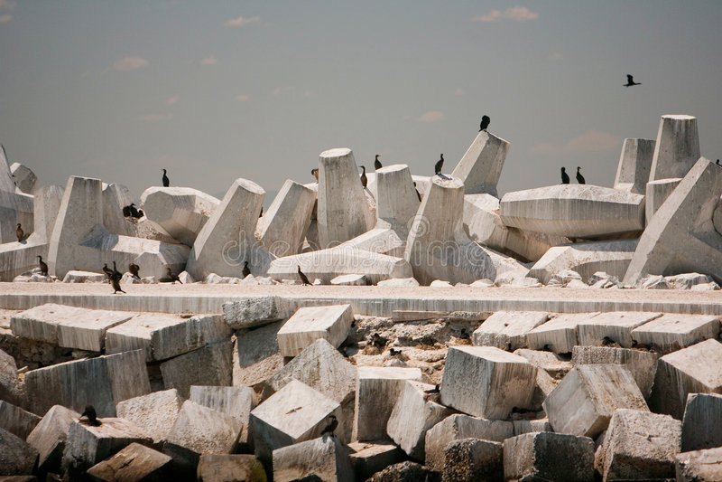 тюрьма острова гавани входа robben стоковая фотография rf