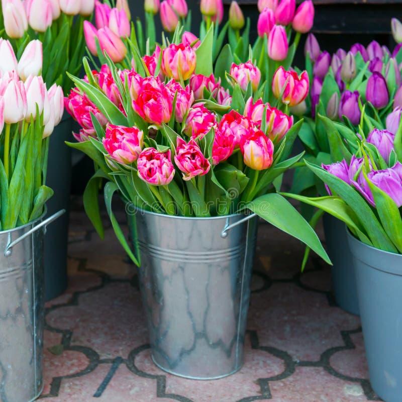 тюльпаны в ведре фото техника