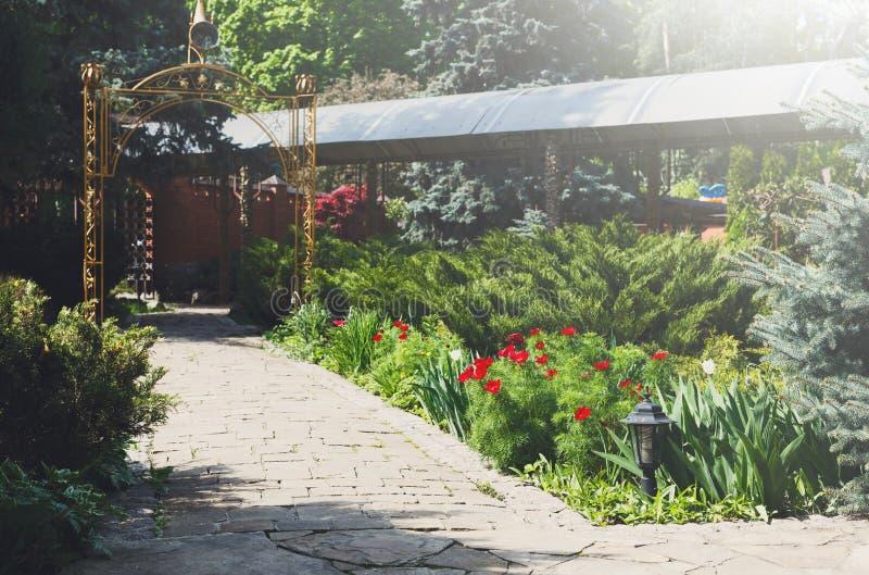 Тюльпаны в саде, дизайне ландшафта стоковые изображения