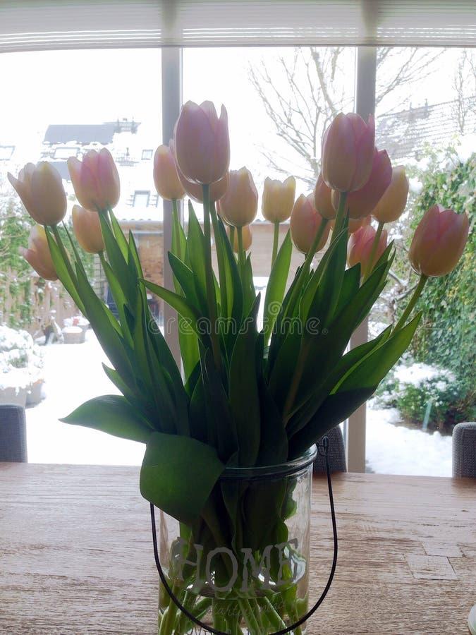 Тюльпаны на таблице стоковая фотография rf
