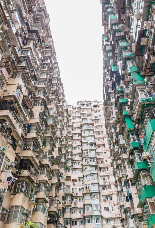 Тяжело заселенный квартал залива с высокими зданиями, Hon карьера стоковые фотографии rf