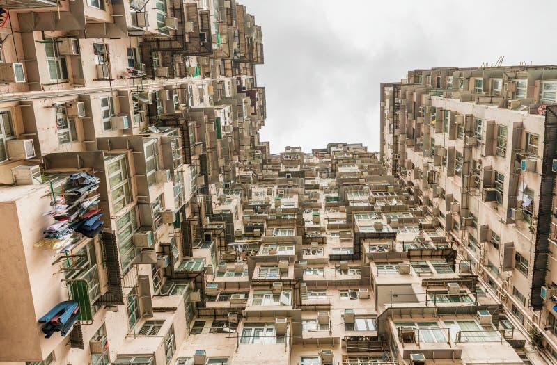 Тяжело заселенный квартал залива с высокими зданиями, Hon карьера стоковые фото