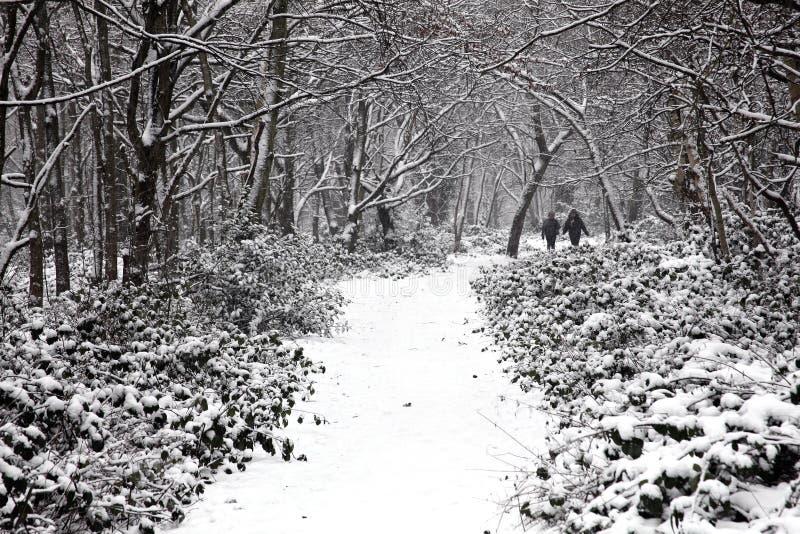 Тяжелое падение снега на общем Wandsworth стоковое фото rf