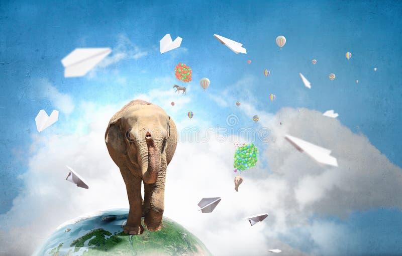 Download Тяжелый налог перехода Мультимедиа Стоковое Изображение - изображение насчитывающей переход, wildlife: 81807635