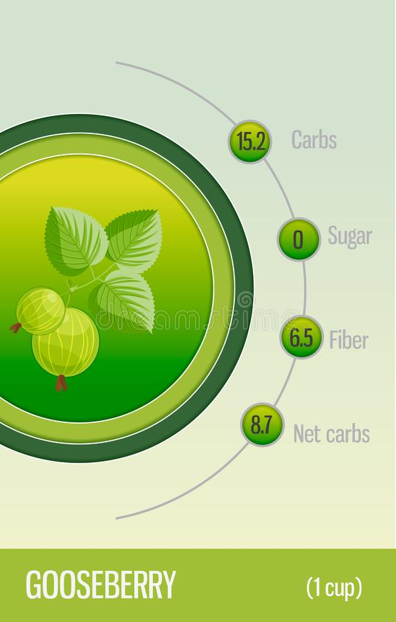 Углеводы, сахар и волокно карты в плодах крыжовник Информация для диетврачей и диабетиков Здоровый уклад жизни иллюстрация штока