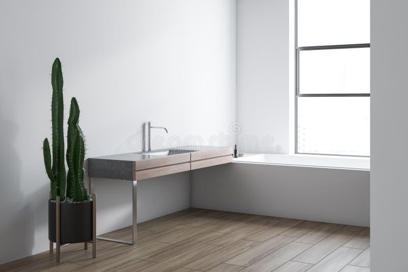 Угол, ушат и раковина bathroom просторной квартиры белые иллюстрация штока