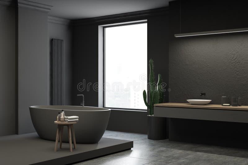 Угол, ушат и раковина bathroom просторной квартиры серые бесплатная иллюстрация