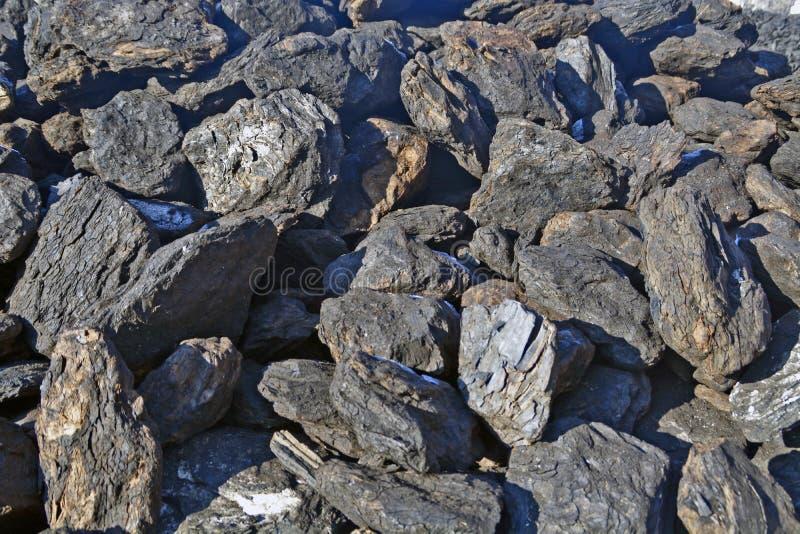 Уголь на зима стоковое изображение rf