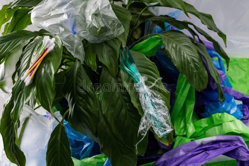 Угрожайте атакованного зеленого растения с вредными пластиковыми про стоковые фото