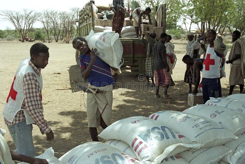Угрожая голод на Afar мимо изменении климата стоковая фотография rf