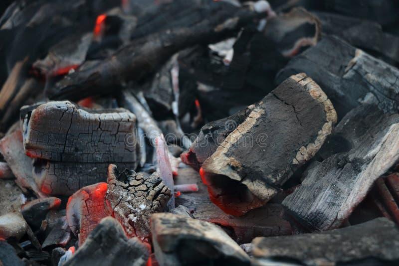 угли стоковые изображения rf