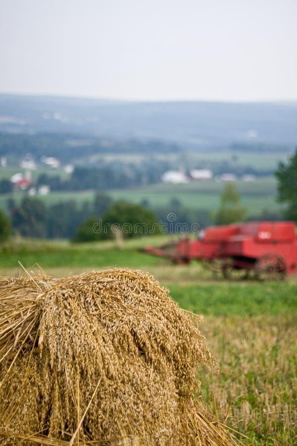 удар овса baler старый стоковая фотография rf