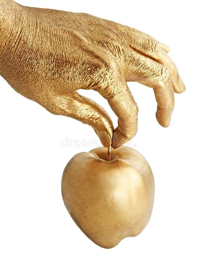 удерживание руки золота яблока стоковые изображения rf