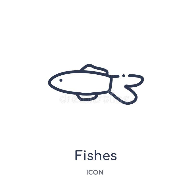 Удит значок от морского собрания плана Тонкая линия значок рыб изолир иллюстрация штока