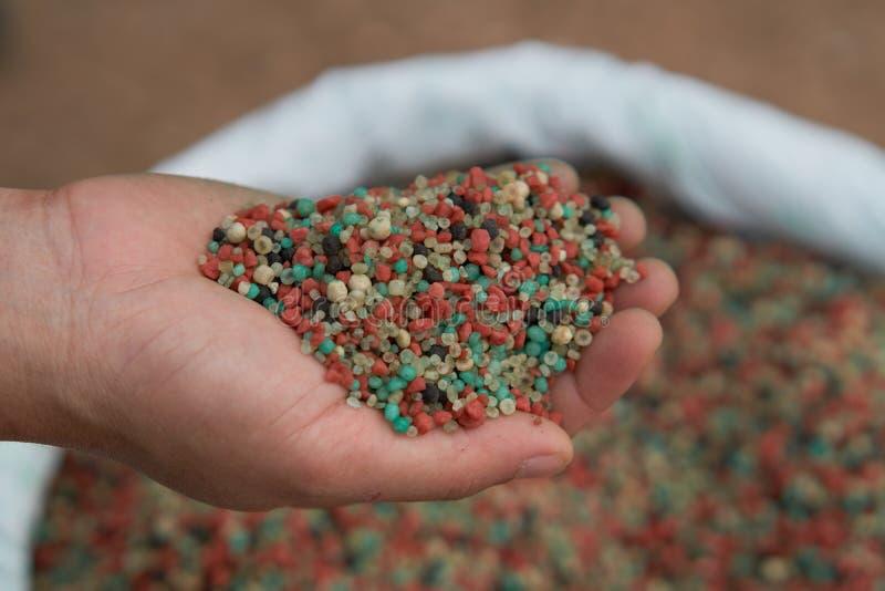 Удобрение в руке фермера стоковое изображение rf