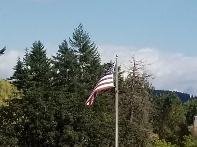 Удостойте нашего флага стоковое изображение rf