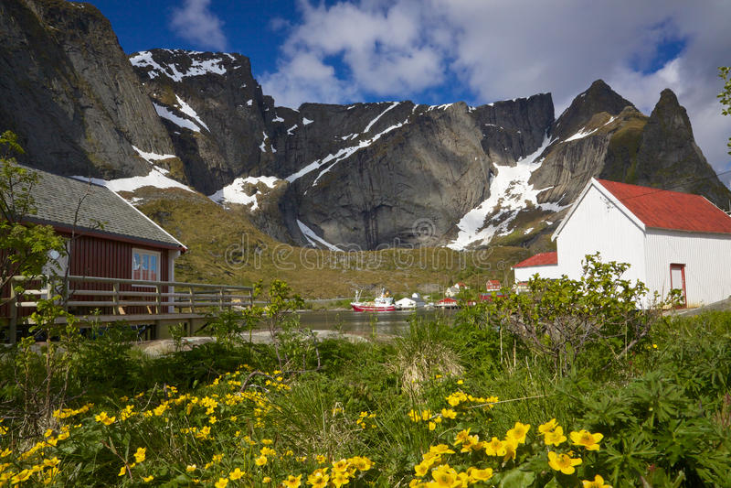 Удя порт на Lofoten стоковое фото rf