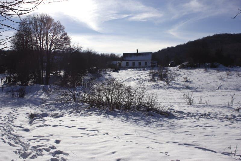 Уединенный дом forester в зиме Snowy леса зимы и дом белого охотника в лесе стоковое изображение