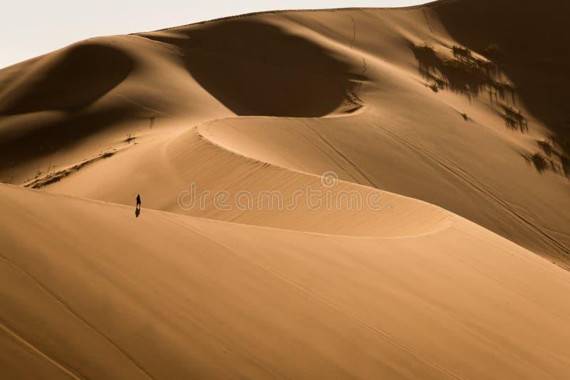 Уединенный ходок в песчанных дюнах Sossusvlei, Намибии стоковые изображения