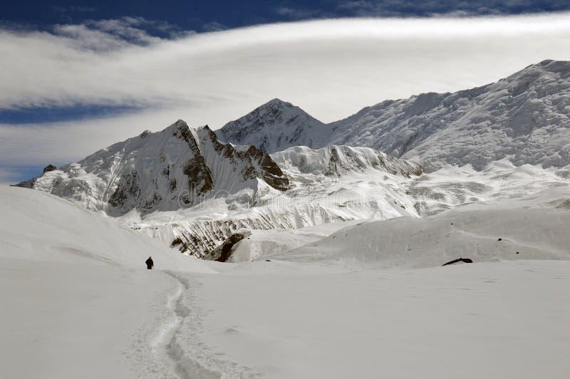 Уединенный hiker на треке озера Tilicho на цепи Annapurna, идя через снег, стоковые фотографии rf
