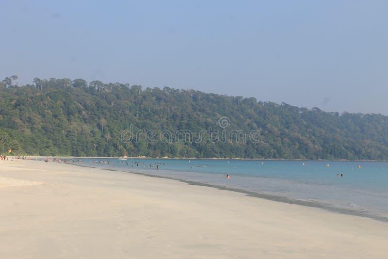 Уединение и пляж стоковое фото rf