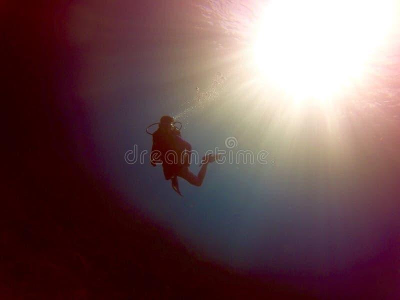 Уединённый водолаз зависящ в глубину океана стоковое фото rf