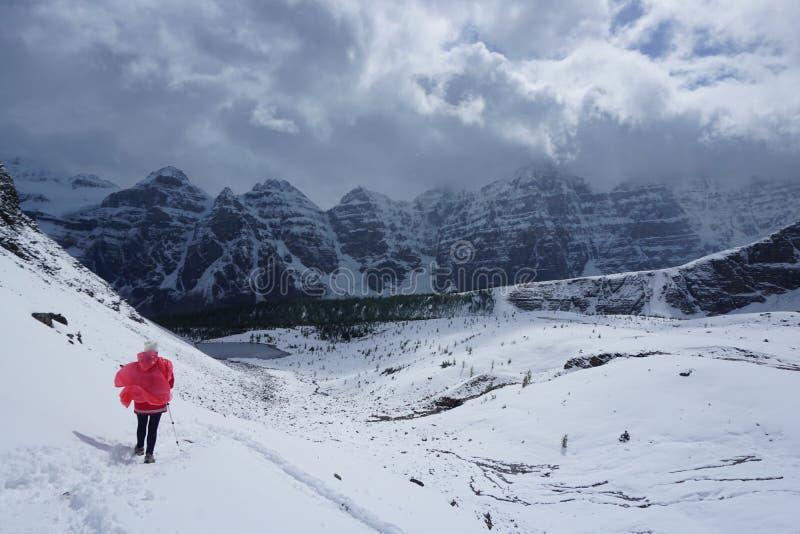 Уединённый hiker в снежной тундре стоковые фотографии rf
