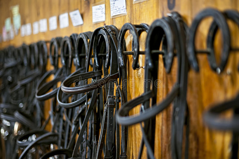 Уздечки лошади вися в конюшне стоковая фотография rf