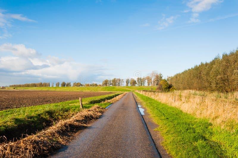 Узкая проселочная дорога в голландском ландшафте осени стоковое изображение