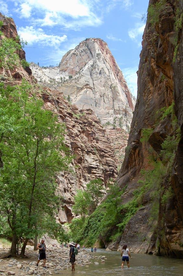 Узкие части на национальном парке Сиона стоковое изображение rf