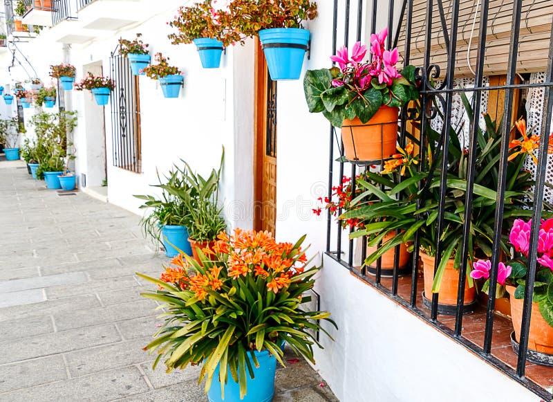 Узкий переулок в деревне Mijas белой украшенной с много цветочных горшков Андалусия, Испания стоковое изображение