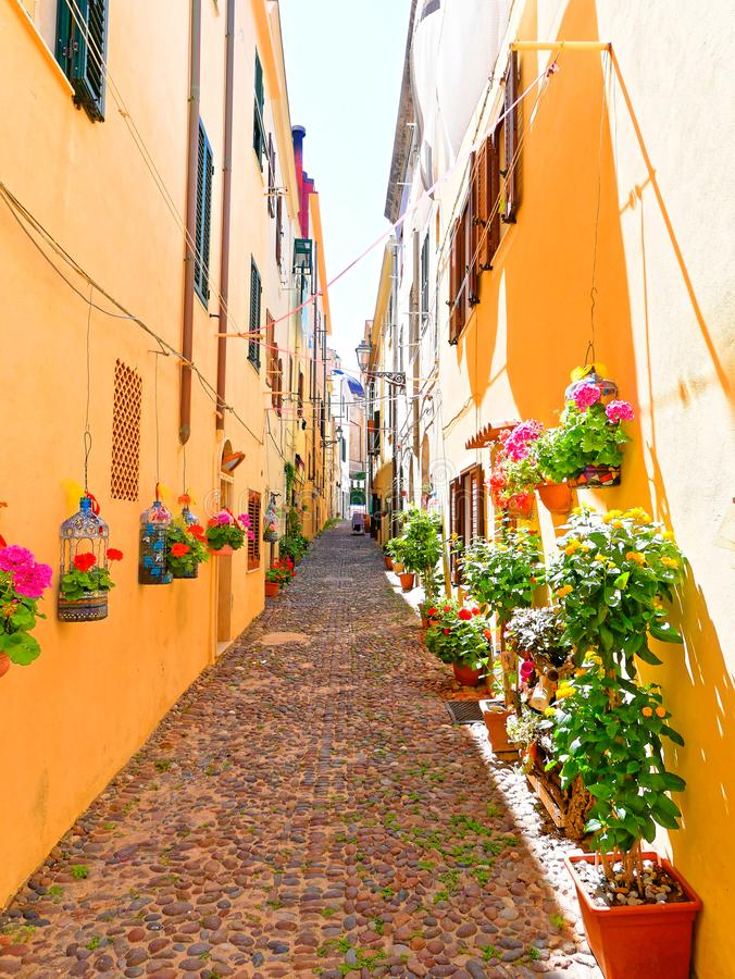 Узкий переулок украшенный с красивыми цветками в Alghero Сардиния, Италия стоковые фото