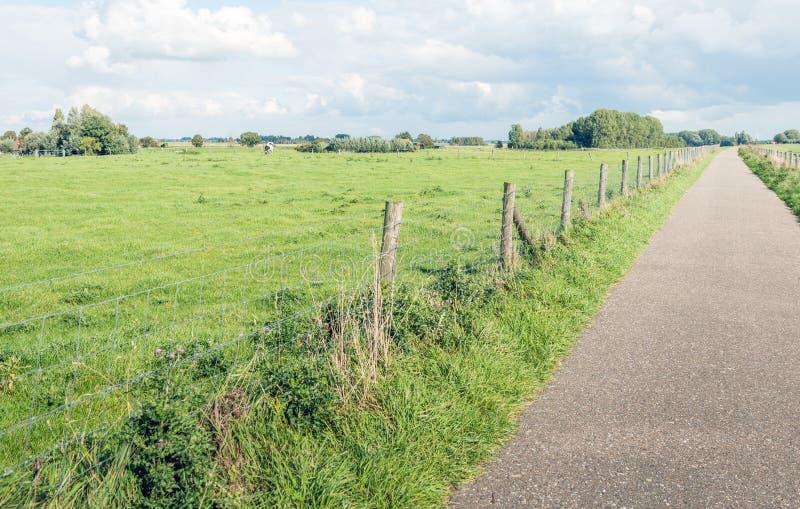 Узкий путь велосипеда na górze голландского dike стоковое изображение rf