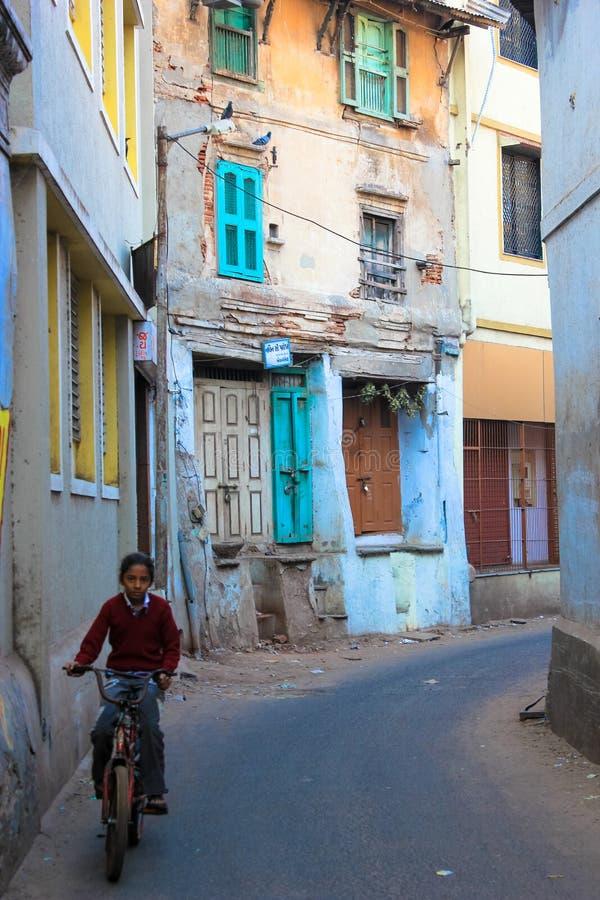Узкий цикл Индия майны стоковые изображения