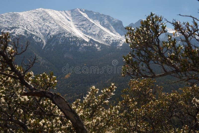 Уилер пика национального парка тазика большой стоковое фото rf