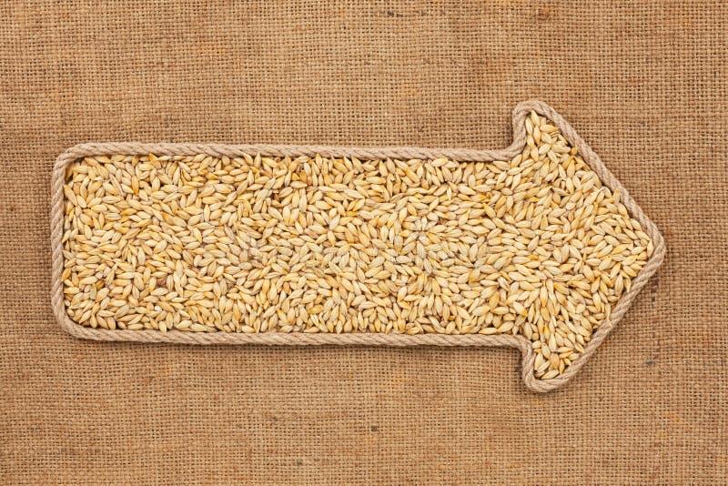 Указатель сделанный от веревочки при ячмень зерна лежа на дерюге стоковые фото