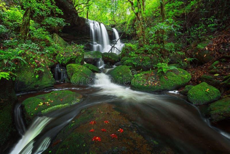 Укомплектуйте личным составом водопад dang в национальном парке kra rong hin Phu стоковые изображения rf