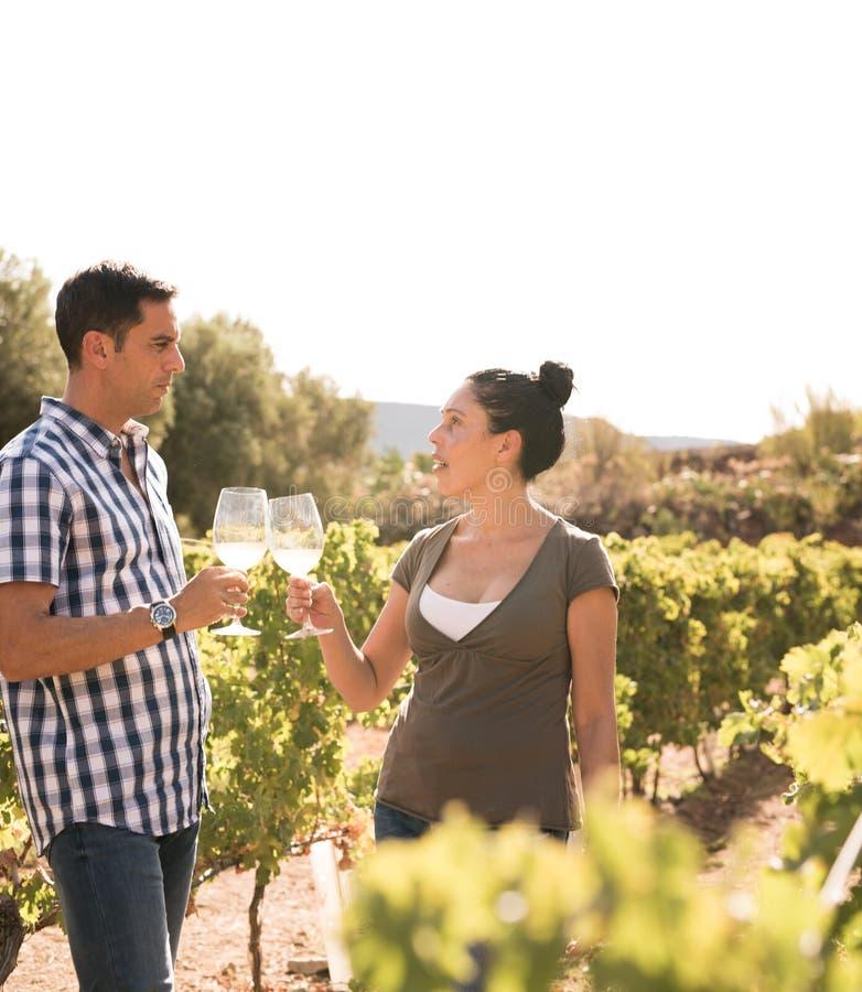 Укомплектуйте личным составом и вино женщины выпивая в виноградниках стоковые изображения