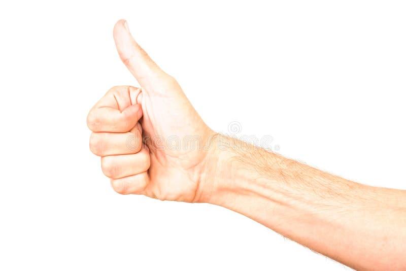 Укомплектуйте личным составом О'КЕЙ знака руки, alright, положительный жест, знак стоковые фотографии rf