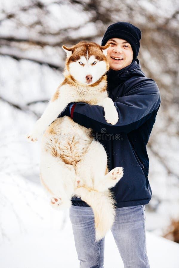 Укомплектуйте личным составом прогулку с его собакой сибирской лайки друга красной в снежном парке тонизировано стоковое изображение