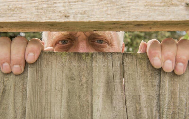 Укомплектуйте личным составом шпионить через деревянное обнести сад стоковое изображение