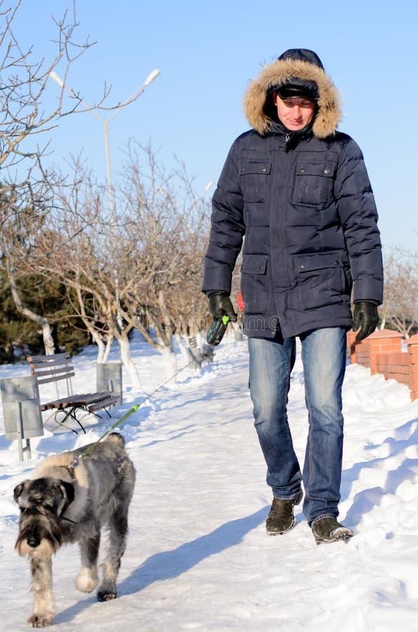 Укомплектуйте личным составом идти его собака на снежном пути стоковое изображение