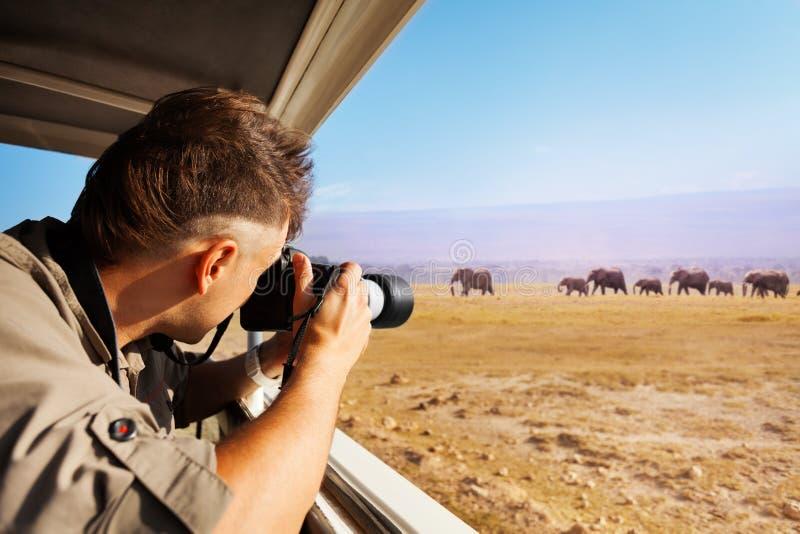 Укомплектуйте личным составом принимать фото слонов на африканскую саванну стоковое изображение rf