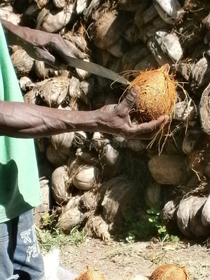 Укомплектуйте личным составом раскрывать кокос с большим ножом стоковое фото