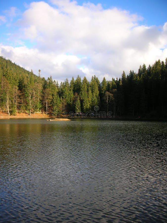 Украина прикарпатский взгляд сверху гор Озеро Synevyr стоковые изображения rf